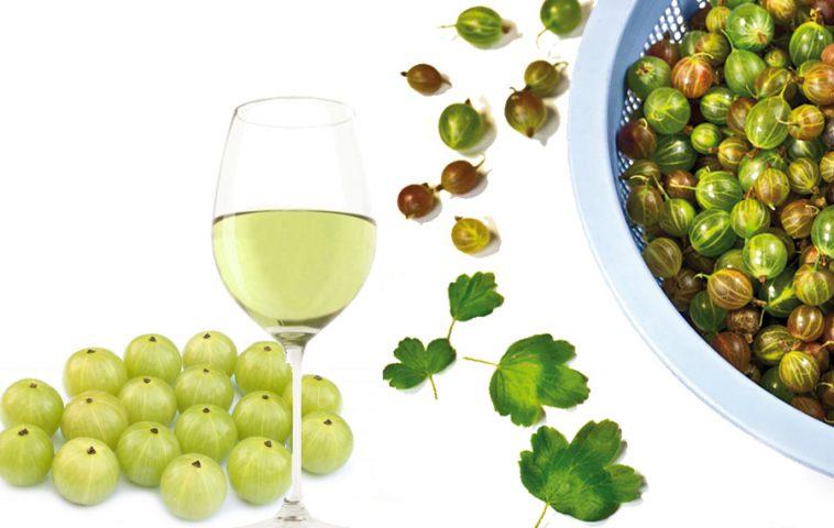 Как сделать вино из крыжовника?