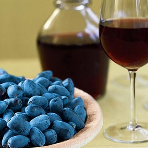 Как сделать вино из жимолости в домашних условиях