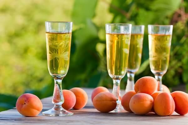 Сделать вино из абрикосов в домашних условиях рецепт 754