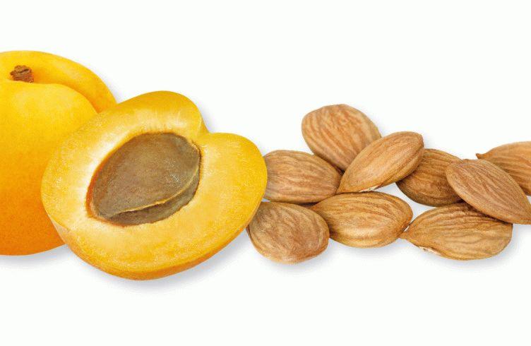 Как сделать абрикосовую настойку или ликер?