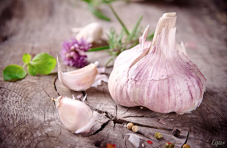 Рецепт приготовления домашнего самогона из чеснока