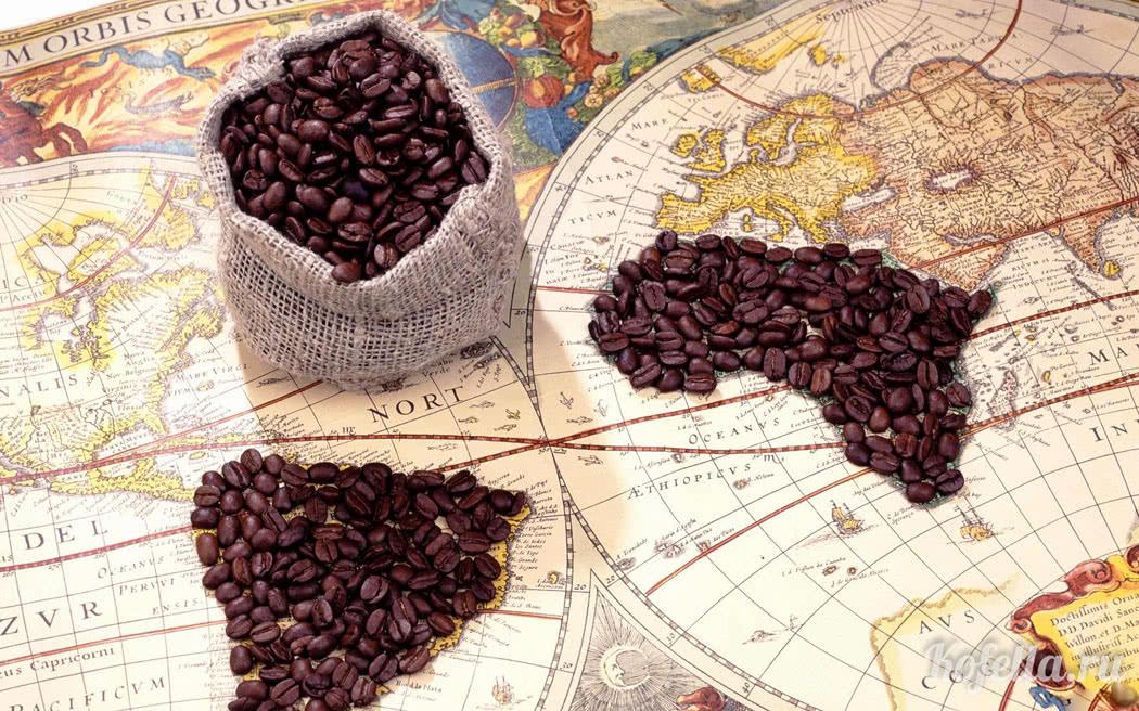 История появления и распространения кофе