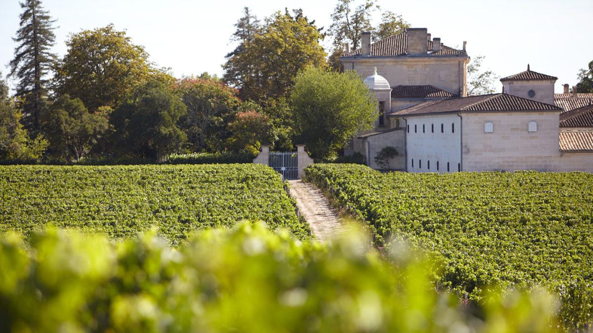 Вино Бордо (Bordeaux)