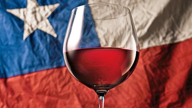 Чилийские вина – сорта, стили и другие особенности